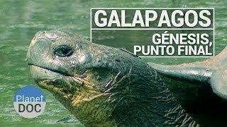 Download Galápagos. Génesis, Punto Final | Documental Completo - Planet Doc Video