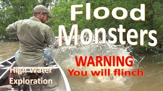 Download Flood Monsters -Close Encounters and Adventure Abound- Video
