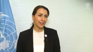 Download H.E. Mariam bint Mohammed Saeed Hareb Al Mehairi, Minister for Food Security of the UAE Video