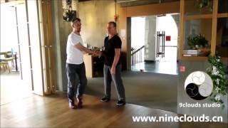 Download Taiji - hanging feet Pushing Hands 1 Video