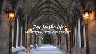 Download Day in the Life of a Cornell Student (Fall 2016) Video