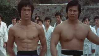 Download Bruce Lee tribute 2013 Video