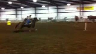 Download Tuffy ~ barrel and pole horse for sale Video