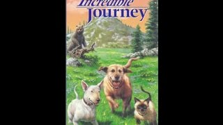 Download Opening & Closing To The Incredible Journey 1994 VHS Video