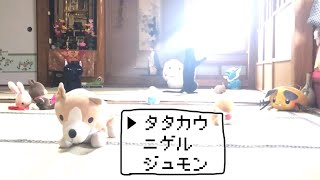 Download ネコ ハ ヌイグルミ 二 カコマレテシマッタ Cat with a lot of stuffed animals Video