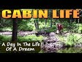 Download OFF GRID CABIN LIFE. A Day in the Life of a Dream Video