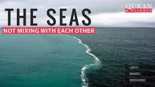 Download The Seas not mixing with each other ┇ Quran and Modern Science ┇ IslamSearch Video