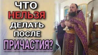 Download Что нельзя делать после причастия. о.Максим Каскун Video