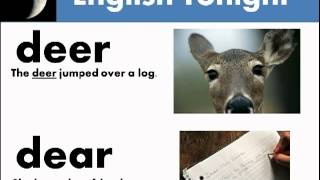 Download 25 Common Homophones in English Video