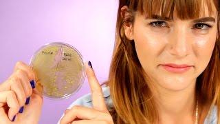 Download How Gross Is Your Makeup? Video