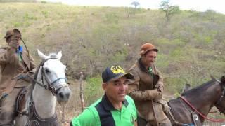 Download FESTA DO VAQUEIRO, 2015 Video