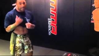 Download Joe Rogan's insane kicks Video