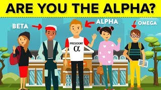 Download Are You The Alpha Male of Your Group? Video