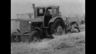 Download КОЛХОЗ ИМ ЛЕНИНА УБОРОЧНАЯ Хроники СССР Video