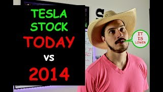 Download Wall Street Has Given Up On Tesla Stock. Have I Given Up?! Video
