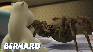 Download Bernard Bear | The Moth AND MORE | 30 min Compilation | Cartoons for Children Video