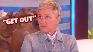 Download When Ellen Loses Her Temper Video