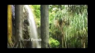 Download Wyjątkowe miejsca na wyspach Seszele Video