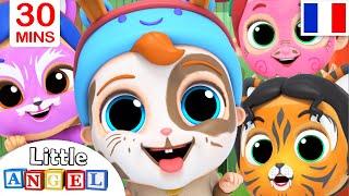 Download J'apprends les animaux - Comptines pour Bébé | Little Angel Français Video