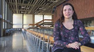Download UC Berkeley Students Talk About Living in the Bay Area Video