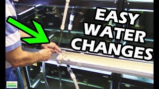 Download How To Do Water Changes in your Aquarium Fish Room. ″Gary Don't Carry″ Video
