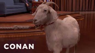Download Conan's $750 Goat - CONAN on TBS Video
