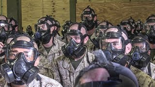 Download Marine Corps Basic Training – Gas Mask & Gas Chamber Exercise Video