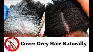 Download How To Turn White Or Grey Hair Into Black Naturally With No Chemicals Natural Hair Dye Step By Step Video
