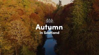 Download Autumn in Scotland Video