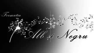 Download Formatia Alb si Negru (Laurentiu Popa) - Un trandafir creste la firida mea ( Machedoneasca ) Video