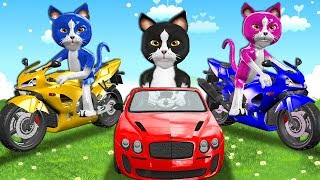 Download Funny Cats On Power Wheels Unboxing Toys Surprise For Kids - Three Little Kittens Nursery Rhymes Video