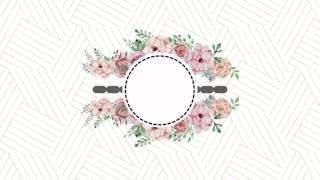 Flourish Animation Background After Effects And Sony Vegas Free