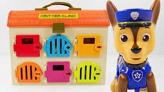 Download Mejores Videos Para Niños Aprendiendo Colores - Paw Patrol Animal Clinic Chase Learning Colors Video