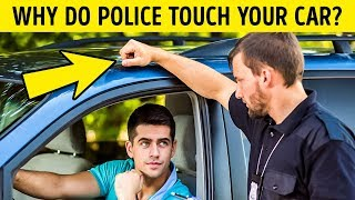 Download 15 Things You Need to Know When Dealing With the Police Video