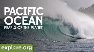 Download Pacific Ocean | Pearls of the Planet Video
