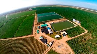 Download AGRÍCOLA SAN JOSÉ / Sullana, Piura - Perú Video