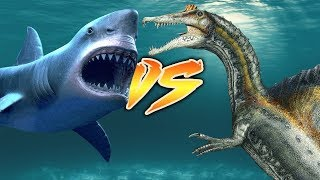 Download MEGALODON VS SPINOSAURUS [Who Would Win?] Video
