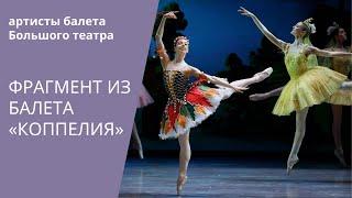Download Grand Pas from 'Coppelia' by Bolshoi ballet / Гранд па из балета «Коппелия» Большого театра Video