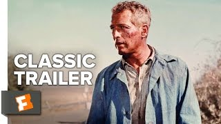 Download Cool Hand Luke (1967) - Official Trailer - Paul Newman, George Kennedy Movie HD Video