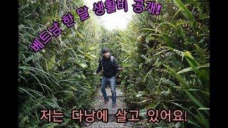 Download [ENG,中字]저는다낭에 살고 있습니다 베트남 한달 생활비 공개 Im living in Da Nang,Show my living expenses, 我住在越南岘港,一个月生活费 Video