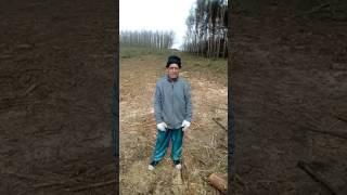 Download Űzenet kobrának Video