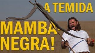 Download O MOMENTO MAIS TENSO DA MINHA VIDA! | MAMBA-NEGRA | RICHARD RASMUSSEN Video