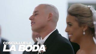 Download Cosculluela - La Boda Video