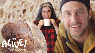 Download Brad and Claire Make Sourdough Bread | It's Alive | Bon Appétit Video