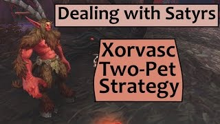 Download Xorvasc - Two Pet Strategy for Leveling Pets on Dealing with Satyrs Video