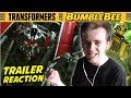 Download Bumblebee Movie (2018) Teaser Trailer REACTION + Thoughts Video