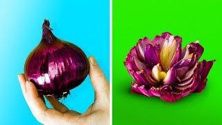 Download 15 فكرة سهلة لتزيين الطعام Video
