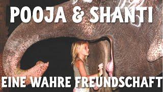 Download Pooja & Shanti - Freundschaft zwischen einem 6-jährigen Mädchen und einem Tempelelefanten Video