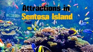 Download Top 14. Best Tourist Attractions in Sentosa Island - Travel Singapore Video