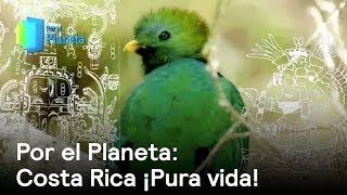 Download Costa Rica, país con mayor biodiversidad por kilómetro cuadrado del mundo - Despierta con Loret Video